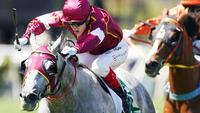 Eurell eyes G1 Stradbroke with Blazejowski