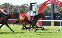 Ilovethegame too good on debut at Sandown