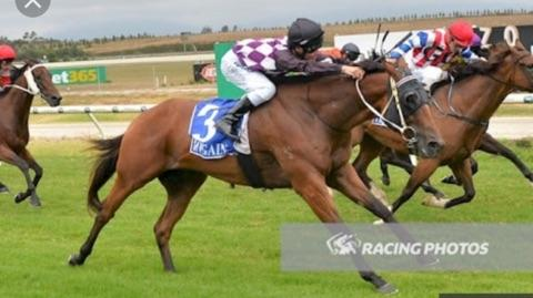 First Watch salutes at Yarra Valley