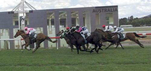 Candy Tuft makes it two in a row at Canberra