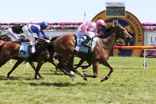 Maglissa fires in front of large band on hand at Caulfield