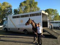 Clare Park Thoroughbreds