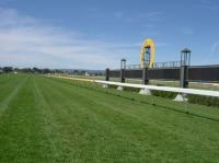 Course Proper at Morphettville
