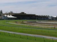 Grass Track & Pro Ride Track