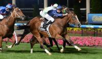 Sensational Win At Moonee Valley For Zac & Jenny