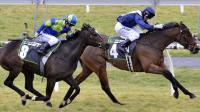 Viddora Wins Last Stakes Race Of Season