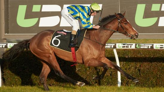 Super Win By Promising Horse