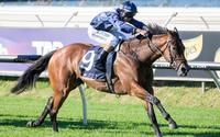 Viddora Gives Us Our First Group 1 Success
