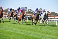 A Jolly Five at Vignerons Cup Day