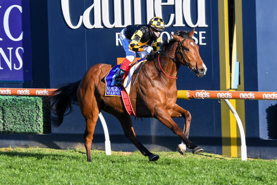 Giant Galloper Behemoth wins Memise Stakes