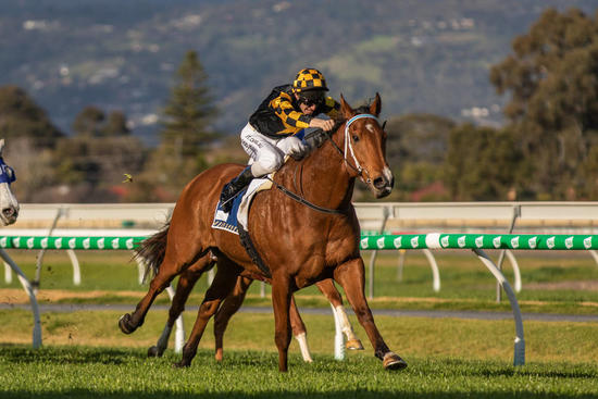 Behemoth blitzes in Group 3 Spring Stakes