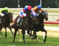 Mouschi breaks maiden in style!!!