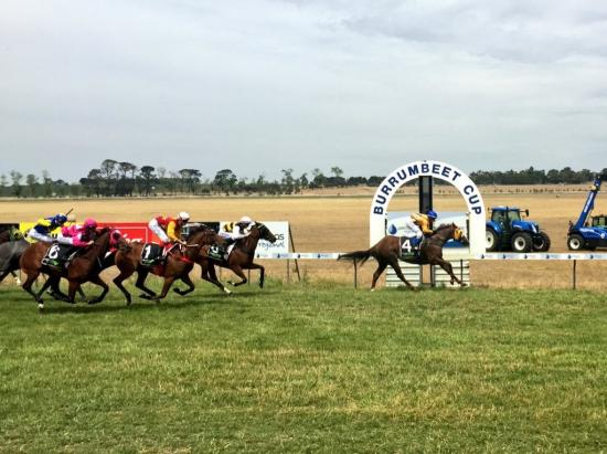 Brooklyn Bridge breaks maiden at Burrumbeet