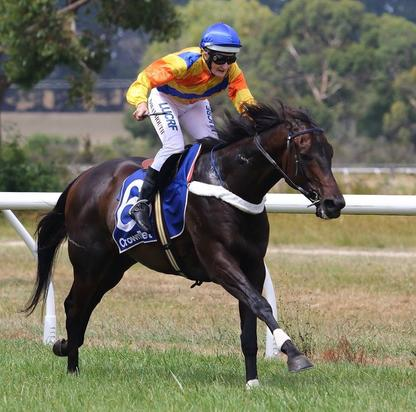 Wanion wins on Australia Day