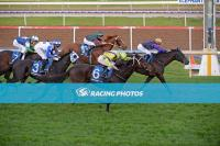 Dark Ensign back to winning ways