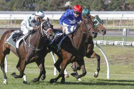 A Gutsy Win To Flying Jess In The Gr3 SA Sires Produce