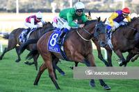 Sir Harald Storms Home at Pakenham