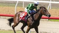 Scorched Earth Sizzles in Magic Millions SA 2YO Classic