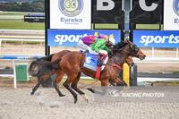 Highly Righteous Impresses in Strong Maiden Win