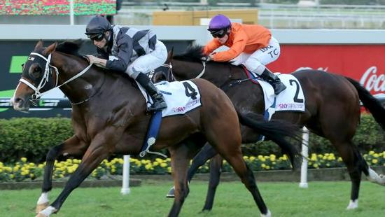 Counterattack to join the Kitchwin Hills roster for 2017