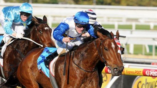 Jockey Mark Zahra to donate winings from victory aboard Miss Bindi