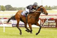 Tarzan I Am swings to big win at Sale
