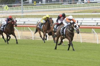 Princess crowns Mornington double for Aldersons
