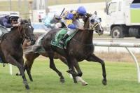Promising Chapkin breaks through at Cranbourne