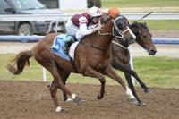 The Tinker's Son returns to winning form