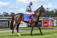 Sizzleme Heads for Caulfield