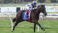 Filly Sizzling on her SA Oaks path