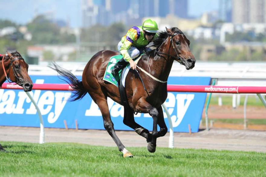 Solicit gets chance to shine at Randwick