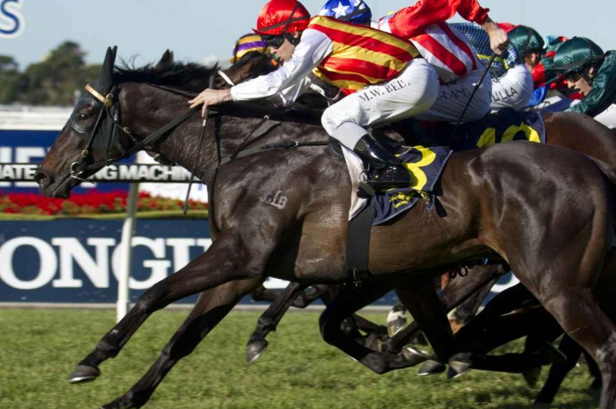 Suboric Rosehill victory costly for Bell
