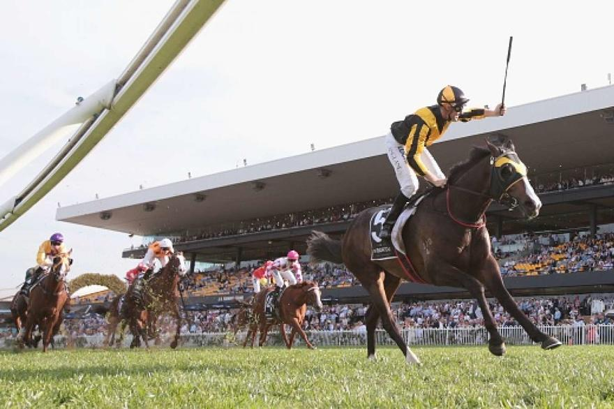 Trapeze Artist wins Group One Golden Rose