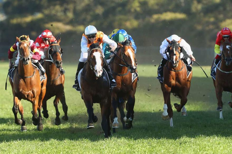 Menari, Deploy remain in contention for a spot in The Everest