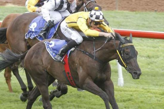 CENTRE DIVIDER Breaks Maiden