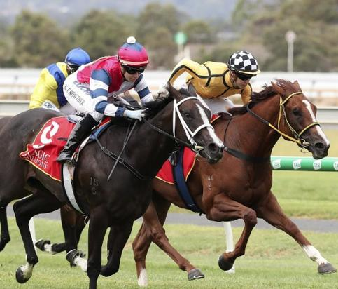 Magic Millions for Li'l Kontra