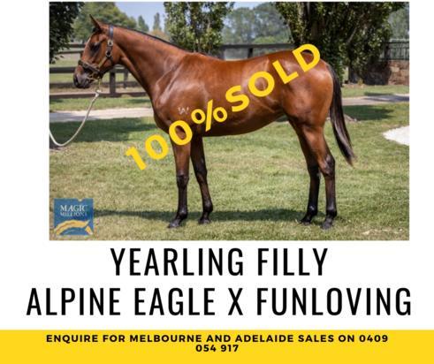 Alpine Eagle Filly joins #TeamRBR