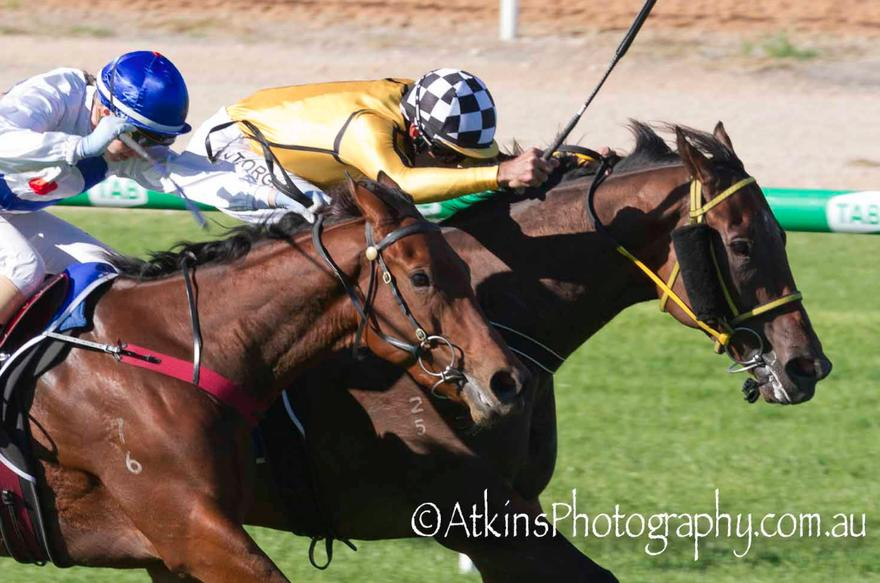 Murray Bridge Maiden for Sidestreet