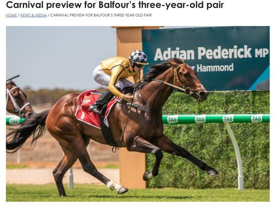 Lincoln Moore - Carnival preview for Balfour's three-year-old pair