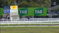 The Stable To Saddle Up Two Runners To Grafton On Sunday