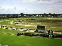 Eat My Trust To Compete At Doomben On Friday