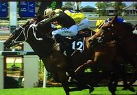 Explosive One Scores At Doomben With A Late Charge With Ron Stewart Aboard