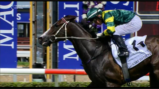 Care To Think Takes Out The Magic Millions Cup Under Jeff Lloyd
