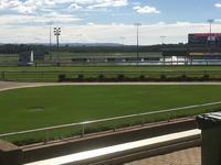The Team Saddles Runners To The Sunshine Coast Metro Meeting On Saturday