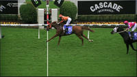 Ready For Danger Puts In Another Solid Performance Over 2040m