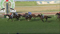 La Scopa Runs On Late To Finish 3rd At Ipswich Over The 1100m Trip