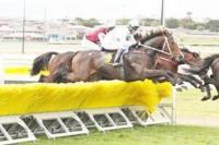 'The Beast' sets sights on the jumps