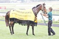 Bashful Girl continues Laming's total Eclipse