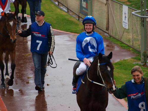 Become involved in the excitement of racehorse ownership